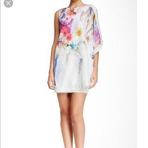 Ted Baker London Flowers dress